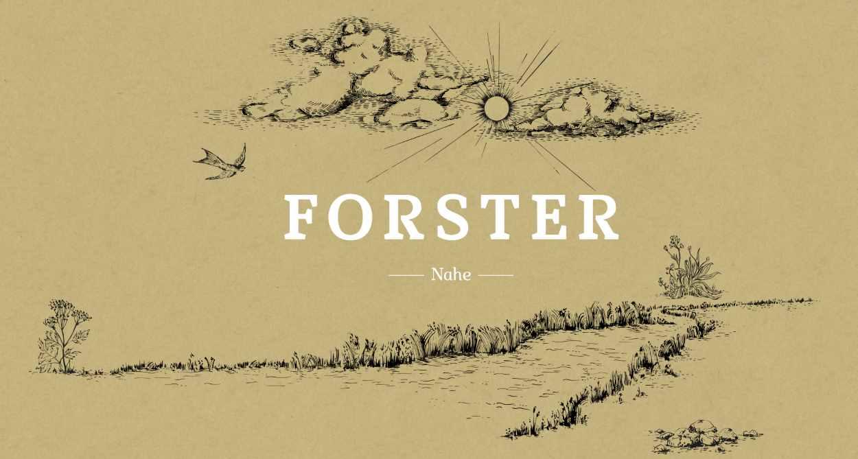 Weingut Forster in Rümmelsheim an der Nahe
